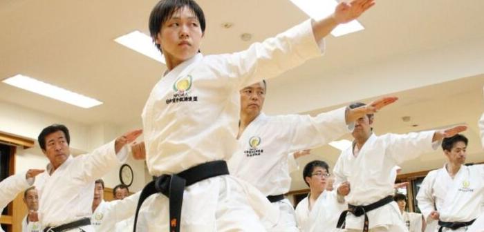 Lo que siempre quisiste saber sobre las artes marciales japonesas
