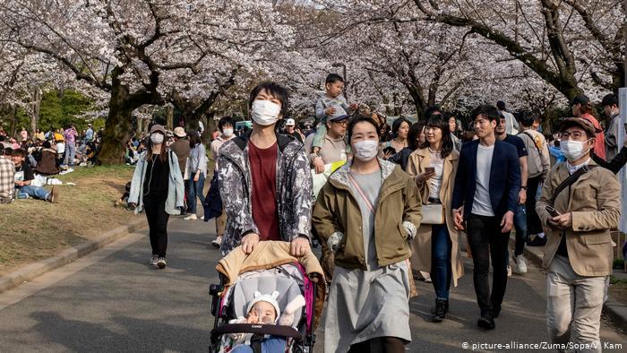 Hanami en pandemia